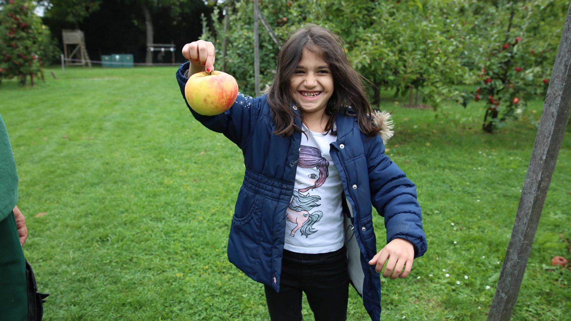 Inmitten von Apfelbäumen hält ein Kinden einen besonders großen Apfel hoch.
