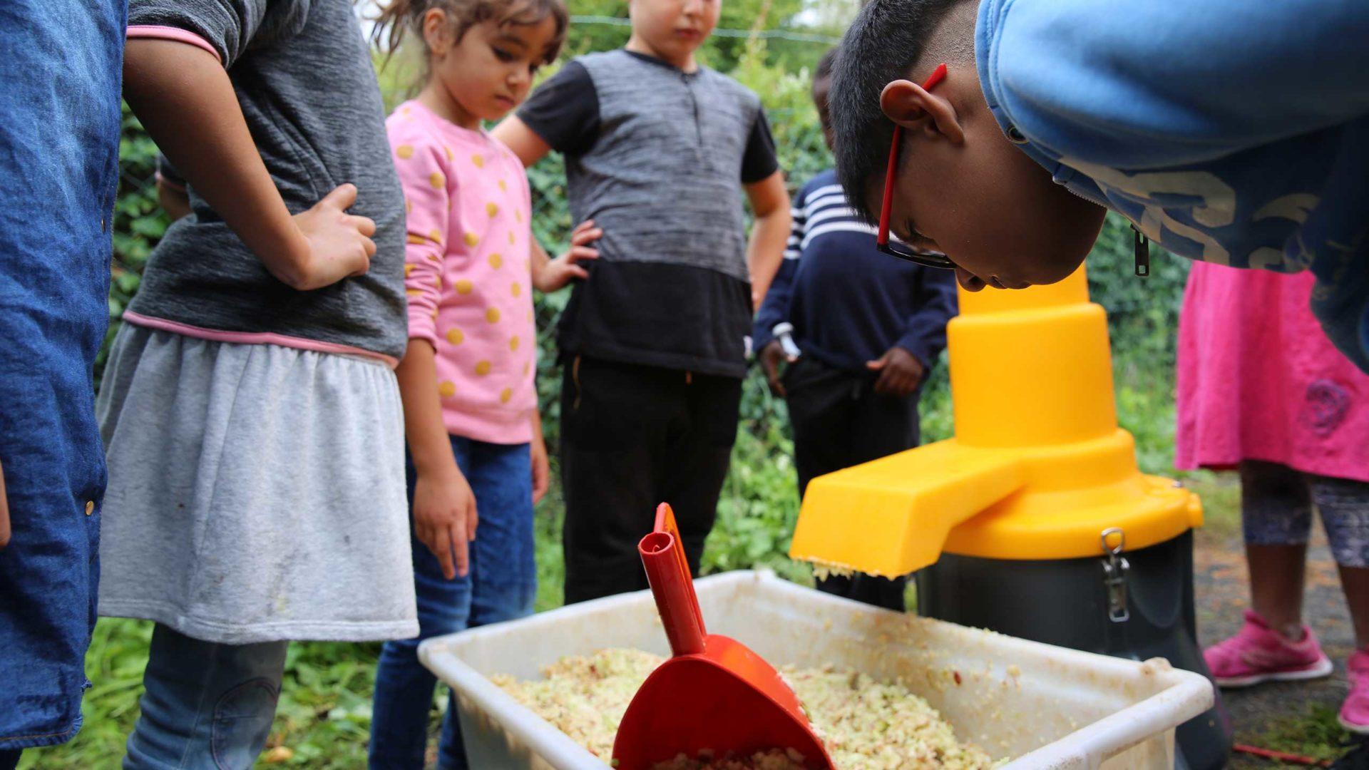 Bei der MILK. Mahlzeit-Aktion werden Äpfel in einer Kernobstmühle zerkleinert.