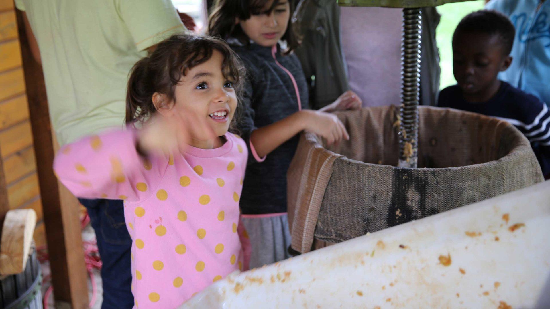 Alle Kinder beobachten gespannt, wie die Äpfel in der Presse gepresst werden.