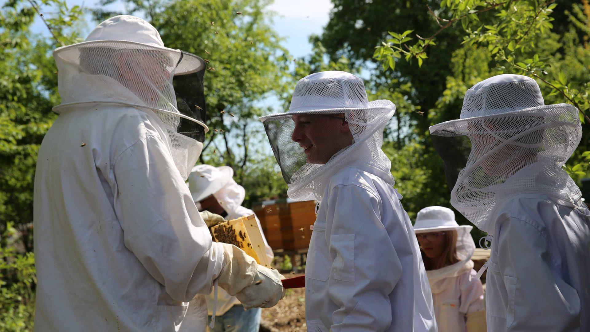 Aktion Mahlzeit bei den Imkern. Die Kinder dürfen in echte Imkeranzüge anziehen und kommen ganz nah an die Bienen heran.