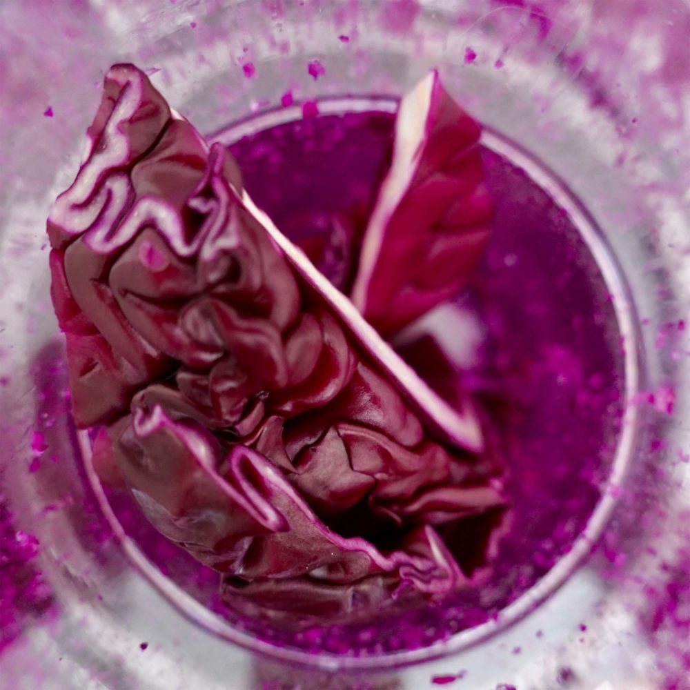 Rotkohl im Mixer vom Milk. Food Lab