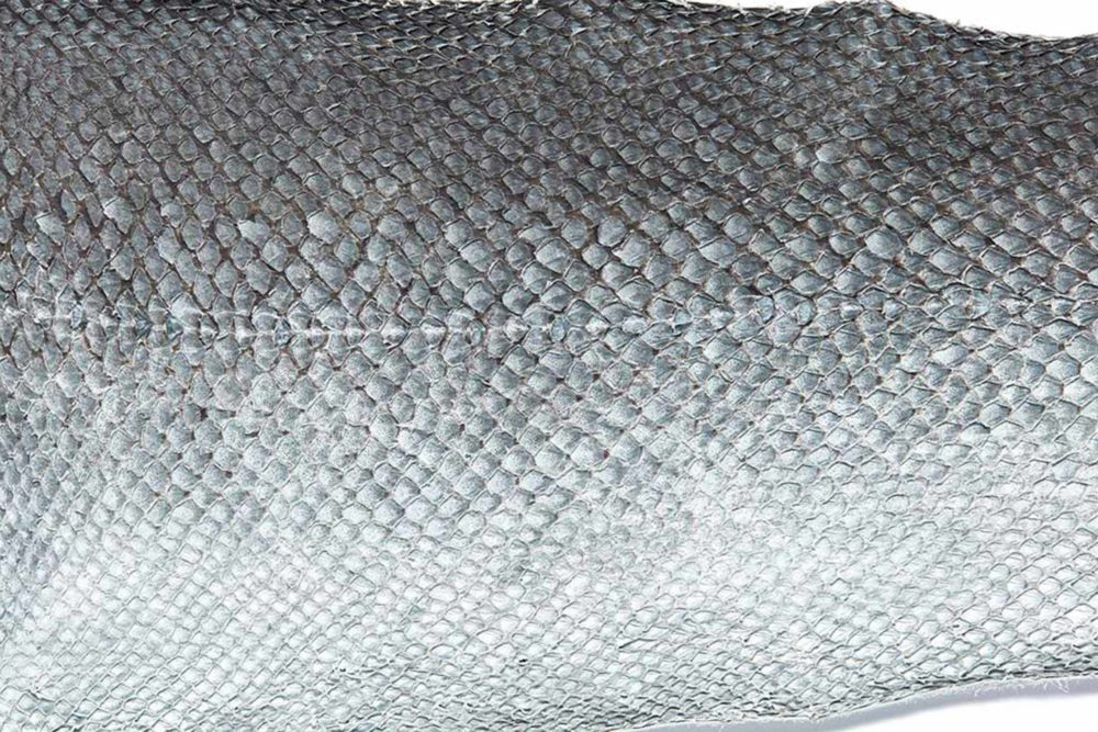 MILK MaterialLab Fish Leather NYVIDD