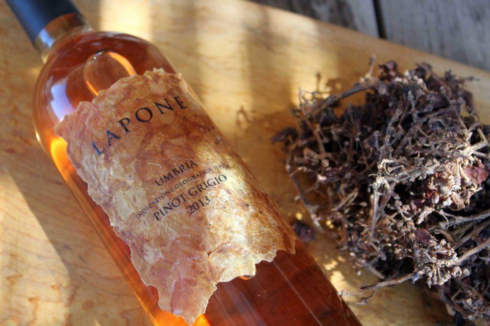 MILK MaterialLab Wine Matters Ludovica Cantarelli